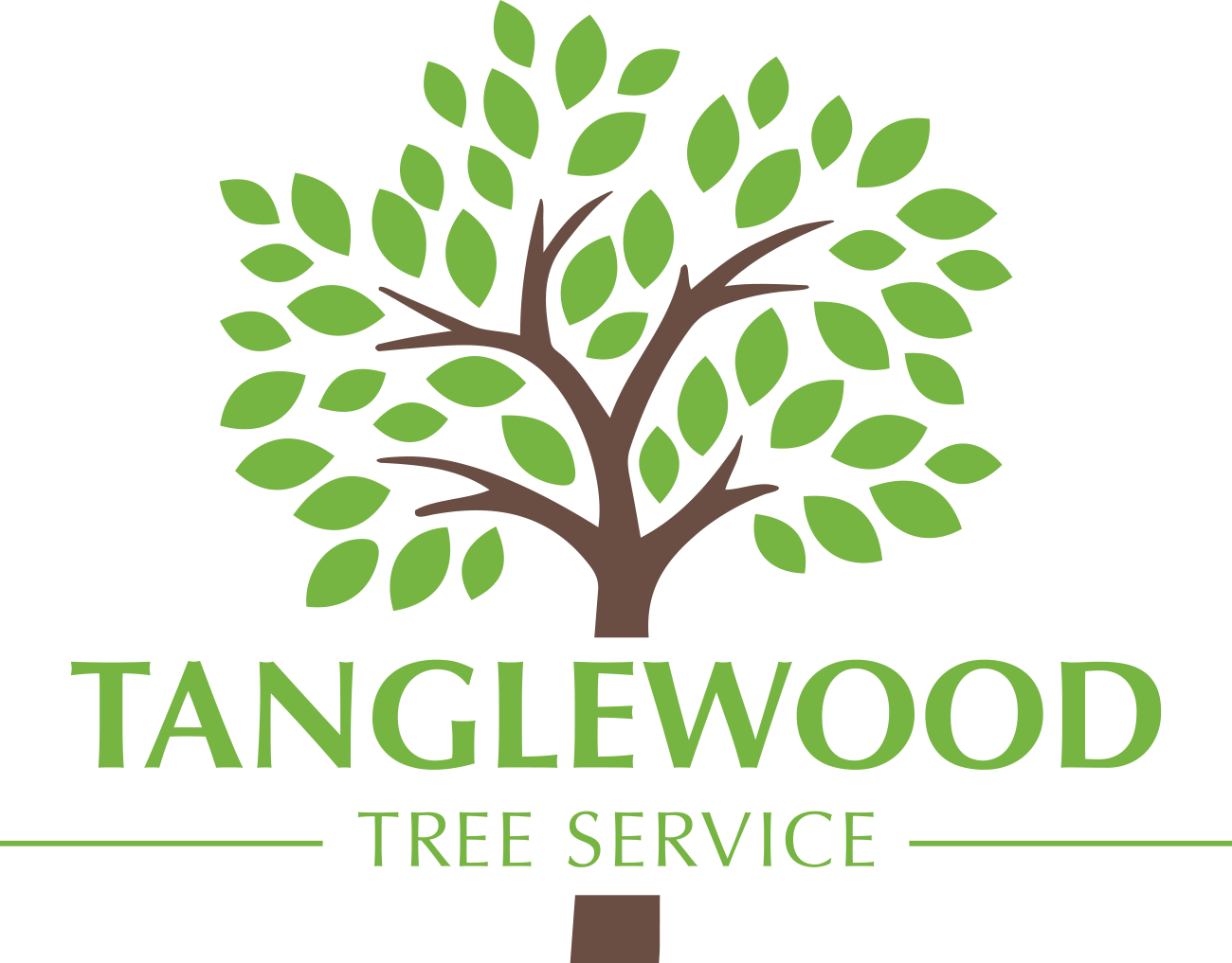 Tree Removal Tree Trimming Fort Collins Co Tanglewood Tree Service